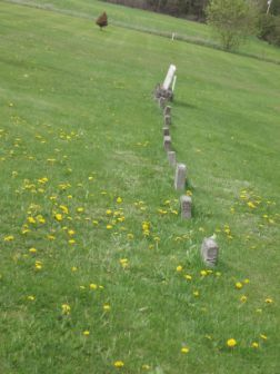Nine little headstones